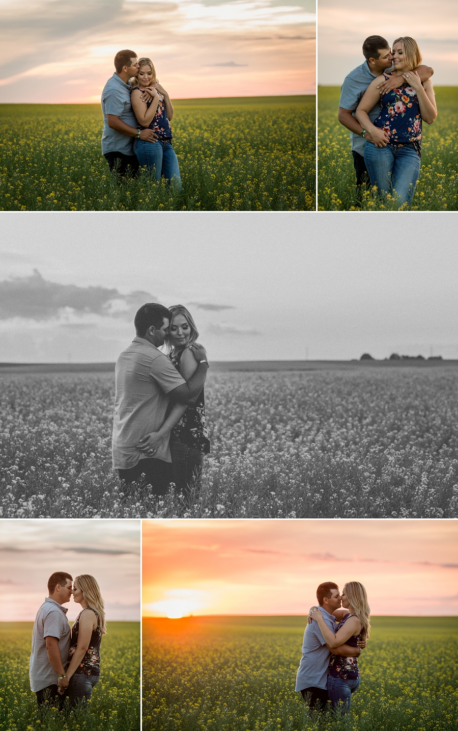 sunset engagement pictures in a canola field
