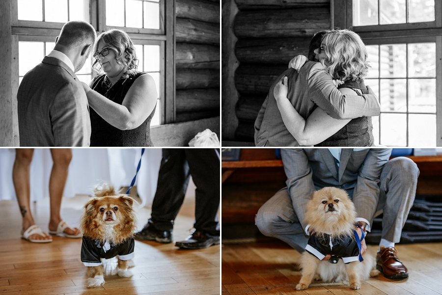 dog ring bearers