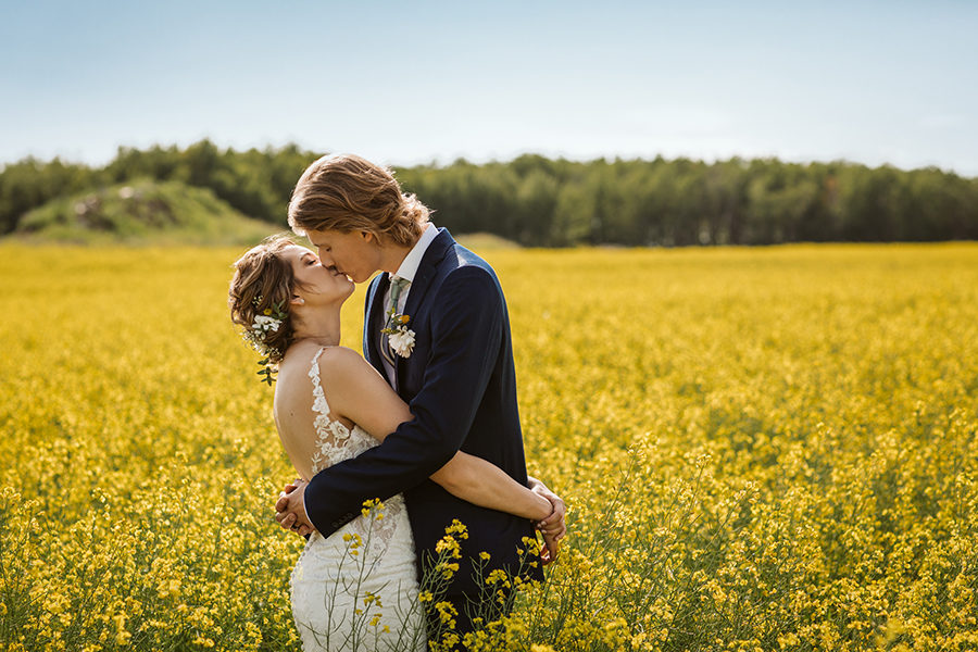 rural saskatchewan wedding photos in canola field